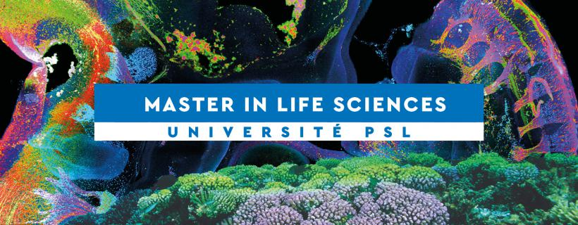 Master Sciences Du Vivant Psl